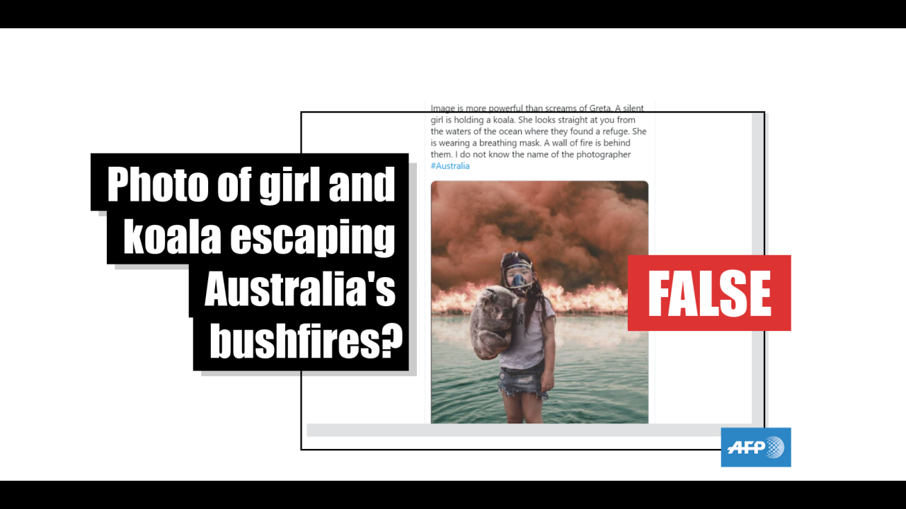 Examples (misinformation, hoaxes, conspiracy theories) - cover